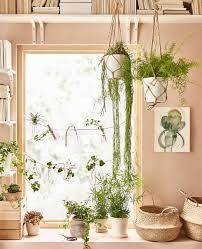 Ikea Plant Ideas by Zen Living Room Decor