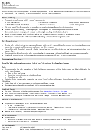 Resume Sample Product Manager by Marketing Resume Summary End Who