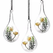 hanging glass hydroponic flower planter vase terrarium container