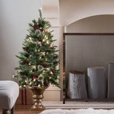 tree entryway trees decor ideas