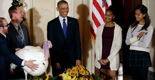 when was thanksgiving made a national holiday once again obama wants you to push liberal views during a holiday