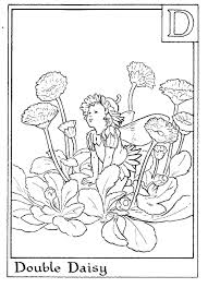 daisy flower sun flower coloring page flower coloring pages