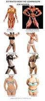 body fat percentage comparisons for men u0026 women