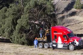 u s capitol christmas tree cut in idaho forest xtreme idaho