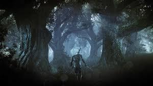 wild hunt witcher 3 werewolf the witcher 3 video features geralt of rivia fighting a werewolf