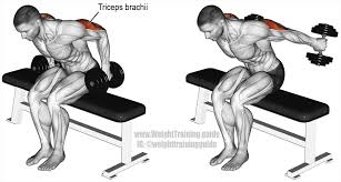 best arm exercises for great results page 4 of 6 weight