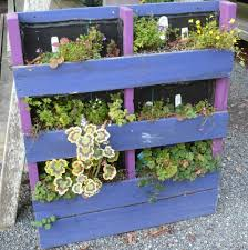 Vertical Succulent Garden Pallet Diy How To Make A Trendy Pallet Garden For Your Home