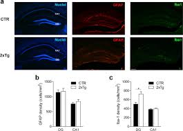 posttraining ablation of generated neurons degrades