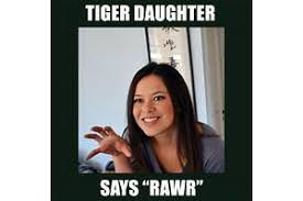 Tiger Mom Meme - tiger mom meme pictures to pin on pinterest thepinsta