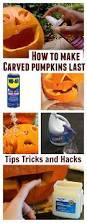 outdoor halloween decorations canada 17 best images about hallow u0027s eve on pinterest bats halloween
