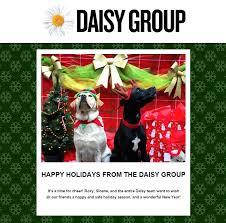 daisy wishes merry christmas happy hanukkah festive kwanzaa