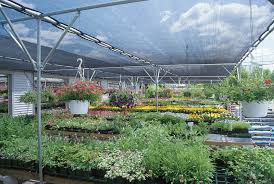 shade structures multi purpose protection rimol greenhouses