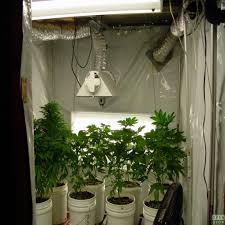 chambre de culture cannabis complete la envoûtant armoire de culture interieur academiaghcr