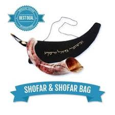 how much is a shofar shofars for sale