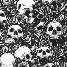 skulls and flames renegade graphix