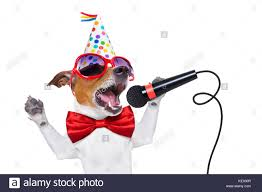 singing birthday dog as a singing birthday song like karaoke