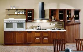 prefabricated kitchen cabinets arranged in single wall home