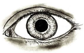 how to draw human eyes draw step by step