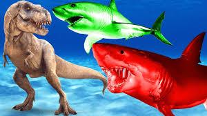 shark movies kids dinosaur shark fish cartoons children