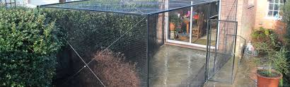 cat runs into glass door pet containment systems cat fencing and cat enclosures