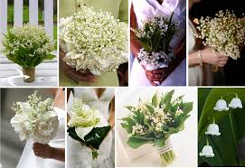 of the valley flower of the valley the flower of may avas flowers