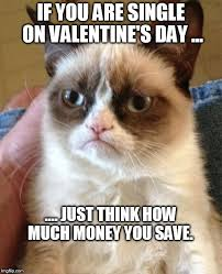 Valentines Day Single Meme - valentine s day money saver imgflip