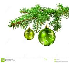 red ball on christmas tree branch stock photo image 11029084