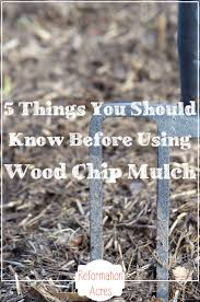 What Type Of Soil For Vegetable Garden - 5 things you should know about wood chip mulch reformation acres