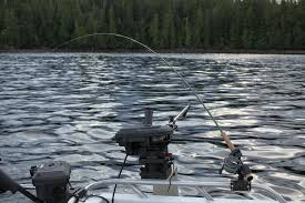 arctic fox tails 4 39 waters west fly fishing outfitters fly trolling south east alaska trollingflies com