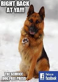 Law Dog Meme - the service dog free press september 2014