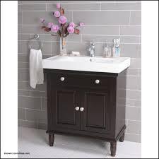 Build Your Own Bathroom Vanity Cabinet Bathrooms Design Small Bathroom Sink Cabinet Wood Bathroom