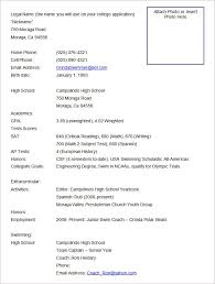 official resume format best resume formats 47free sles exles format free with
