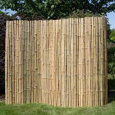 bambus design ideen bambus garten design bambus garten design ideens