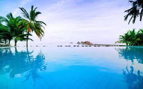Palm Tree Wallpaper Hd Beach Widescreen Backgrounds Find Best Latest Hd Beach