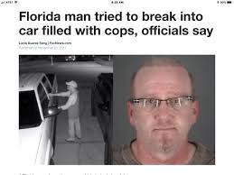 Florida Man Meme - 16 best florida man images on pinterest ha ha funny stuff and