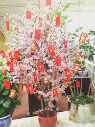 New Year Home Decorations Ideas by New Chinese New Year Home Decoration Decorating Ideas Best At