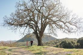 California destination travel images Where to elope in los angeles besides the courthouse jpg