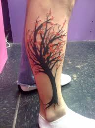 japanese cherry blossom tree picture at checkoutmyink com