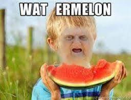 Wat Meme - wat on pinterest wat meme taylor york and memes all i hear is