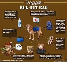 10 Must Haves For Your by 10 Must Haves For Your Pet S Bug Out Bag Preppers