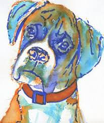 boxer dog quebec 1760 best boxer dog images on pinterest boxer love boxers and