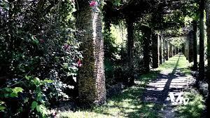 Cairns Botanical Garden by Fairchild Tropical Botanic Garden Miami Florida Youtube