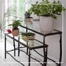 indoor gardening houseplant care gardener u0027s supply
