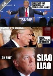 Singapore Meme - trump s memes trump the internet as he is elected the president of