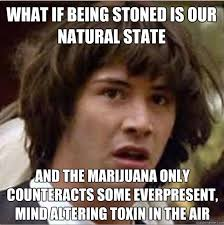 Funny Stoner Memes - weed memes 420 singles