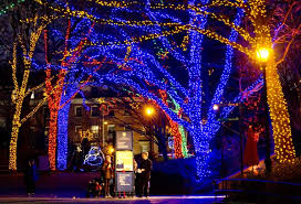 national zoo christmas lights washington dc national zoo