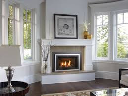 Contemporary Gas Fireplace Insert by Regency Fireplace Inserts U0026 Stoves Berkeley Heat