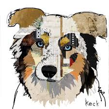 australian shepherd crufts 2015 australian shepherd smart working dog australian shepherd dog