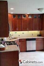 Kitchen Cabinet Door Style 25 Best Transitional Style Kitchens Images On Pinterest