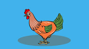 how to draw hen coloring pages for kids how to colour a hen